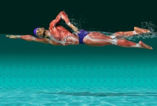 man swimming1