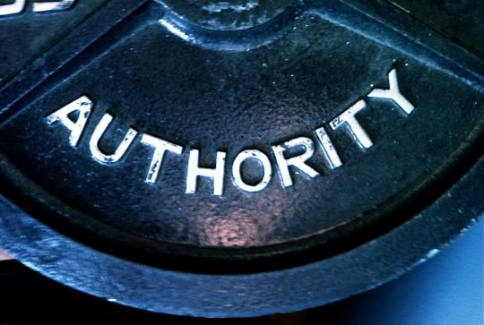 authority-weight-800