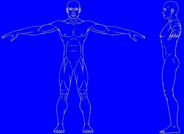 athletic-male-negative-800-blue